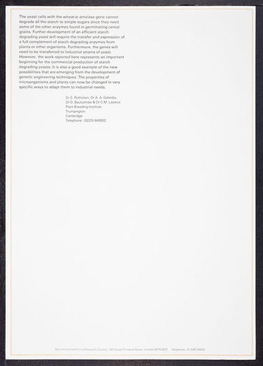 rothschild letter 21