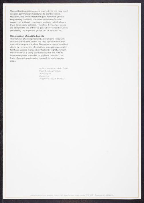 rothschild letter 32