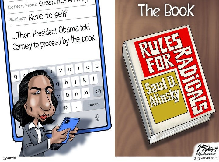 susan rice book