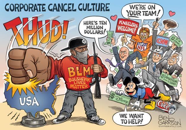 Blm terrorizes america