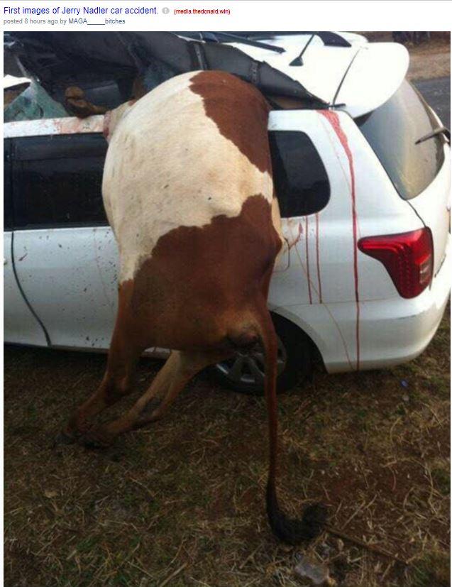 jerry nadler car accident