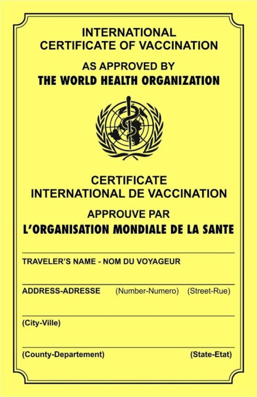vaccine identification passport