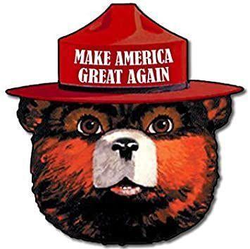 smokey bear MAGA