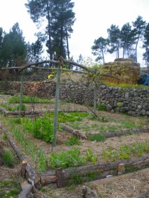 aime-jardinage05-jardins-pluriel-laurac