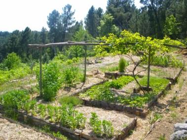 aime-jardinage11-jardins-pluriel-laurac