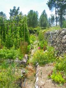 aime-jardinage16-jardins-pluriel-laurac