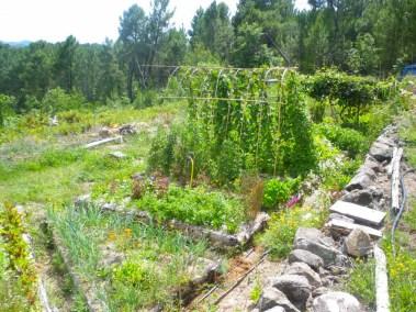 aime-jardinage18-jardins-pluriel-laurac