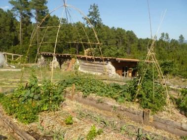 aime-maison03-atelier-jardin-potager