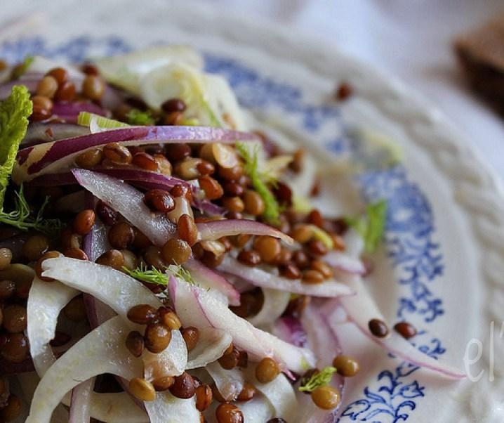 Salade de lentilles blondes, fenouil et oignon rouge