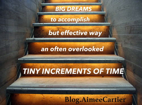 accomplishing big goals with tiny children aimee cartier blog  by Hans Brinker-001