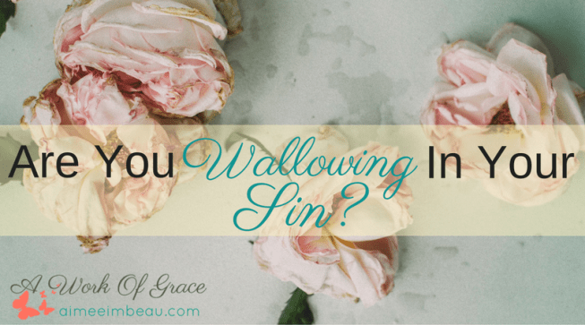 Have you ever just stewed in anger? Or enjoyed a bitter thought about someone? If you have, then you wallowed in sin. Here I share some Biblical truth I discovered when I wallowed. Are You Wallowing In Your Sin