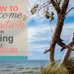 How to Overcome Opposition When Building for Wisdom