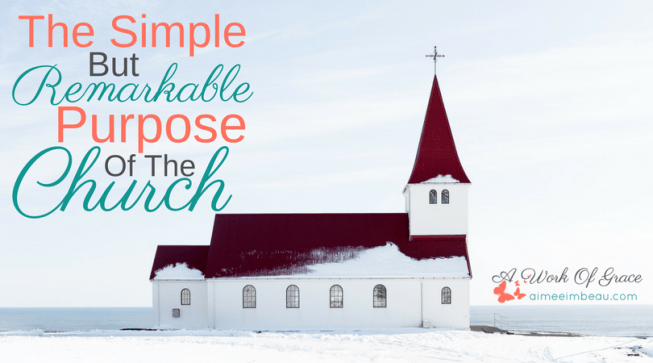 Do you ever wonder why we need the church? Too often all we see is all out war within the church, so really, what's the point? Maybe we need to look beyond our own selfishness to see His purpose for His church. Maybe then we will truly get it. The Simple But Remarkable Purpose Of The Church.