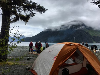 Another hammock view. Resurrection Bay in the background