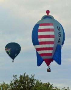Interesting shaped hot air balloons