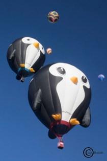 Interesting shaped hot air balloons: The Albuquerque International Balloon Fiesta