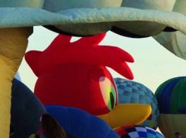 Interesting shaped hot air balloons: Woodpecker Hot Air Balloon Photo