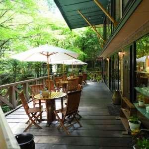 日吉町 鬼岩公演 呂久沢の森に佇む、素敵なカフェレストラン Ryo-an(了庵)  様