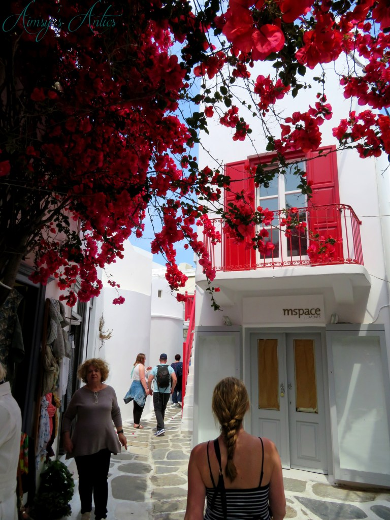 Image of a Street in Mykonos Town, with bougainvillea tree to the left hand side of the picture.