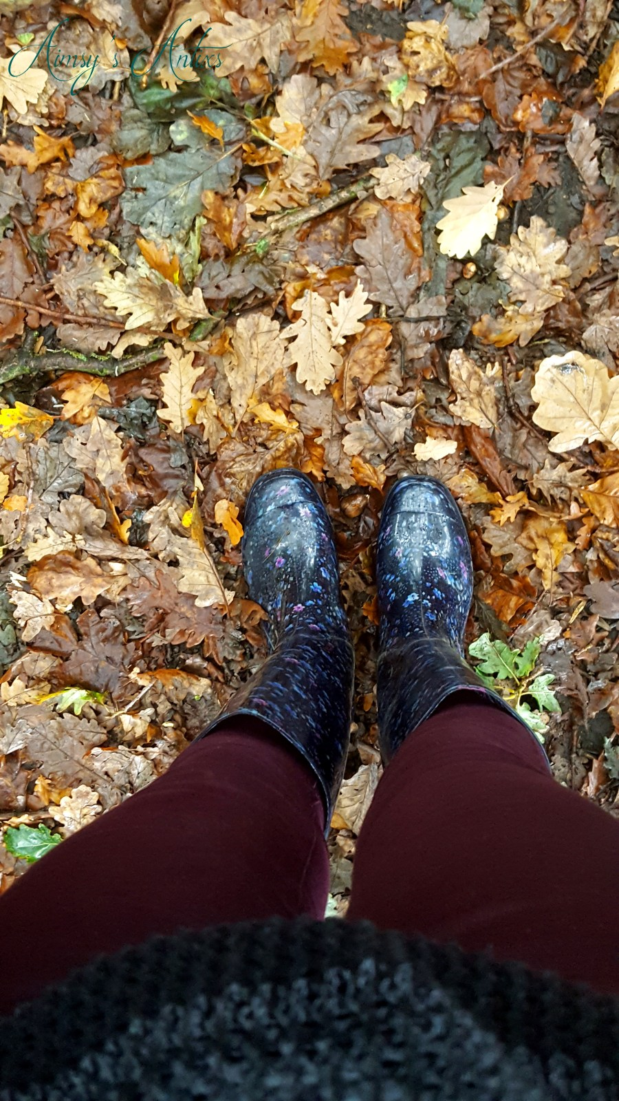 Image of view of woman's legs wearing purple / plum jeans and navy wellington boots, stood on autumn leaves