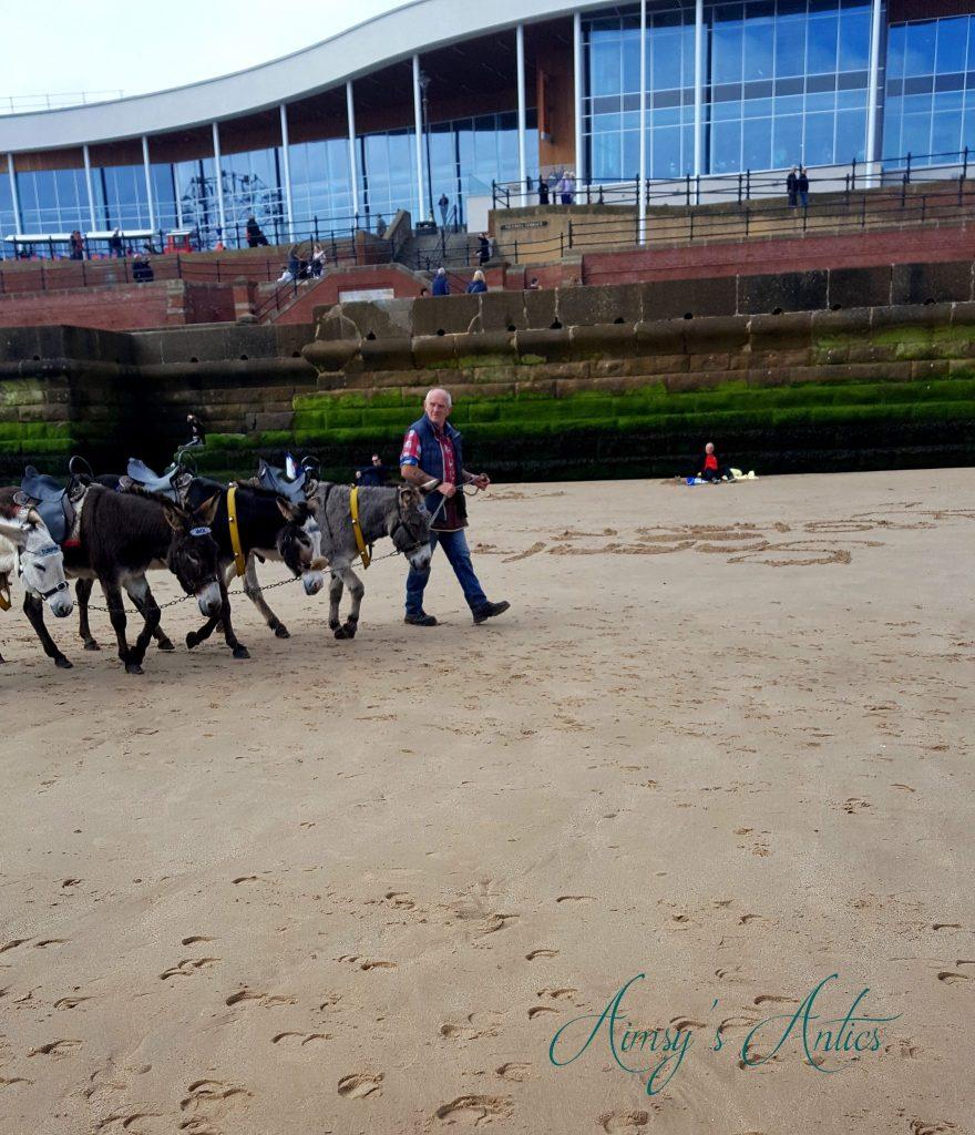 Man walking several donkeys along Bridlington Beach.