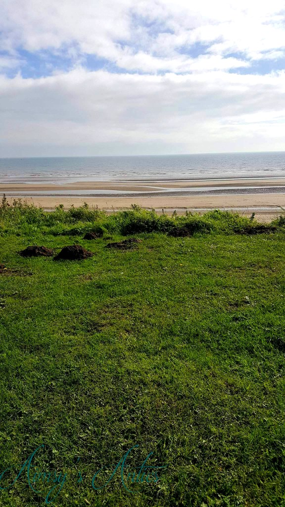View of Bridlington beach from a grass verge in the park and ride