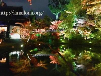 高台寺プロジェクションマッピング・知恩院ライトアップ
