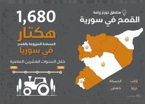 بحث عن القمح في سوريا خلال 10 أعوام