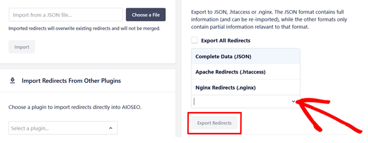 choose export format in all in one seo