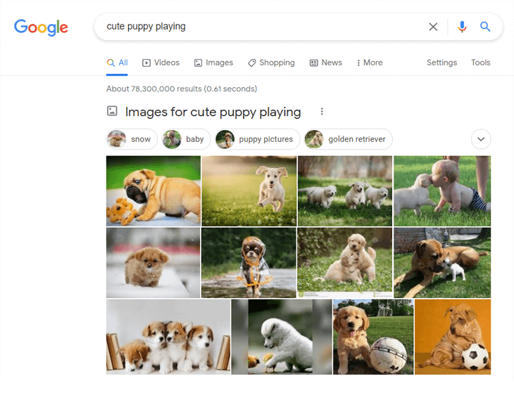 example of image search on google