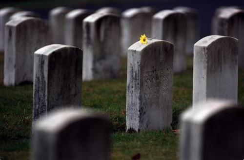 Undying Epitaphs-cemetary_flower