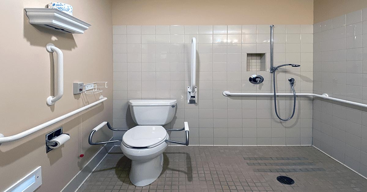bathroom grab bars for aging in
