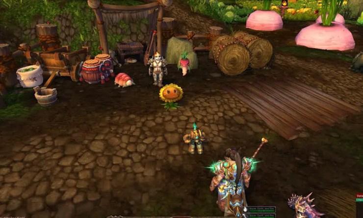 farmer-nishi-wow-pet-battle
