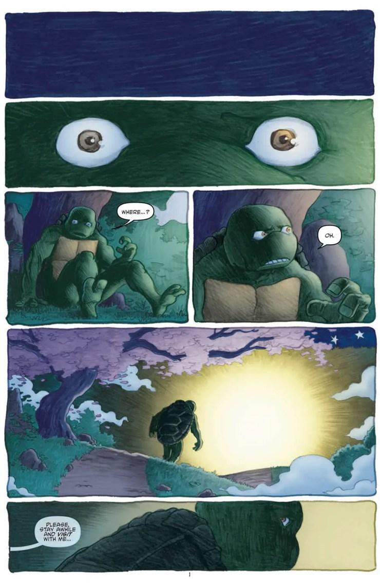 Is It Good? Teenage Mutant Ninja Turtles #45 Review