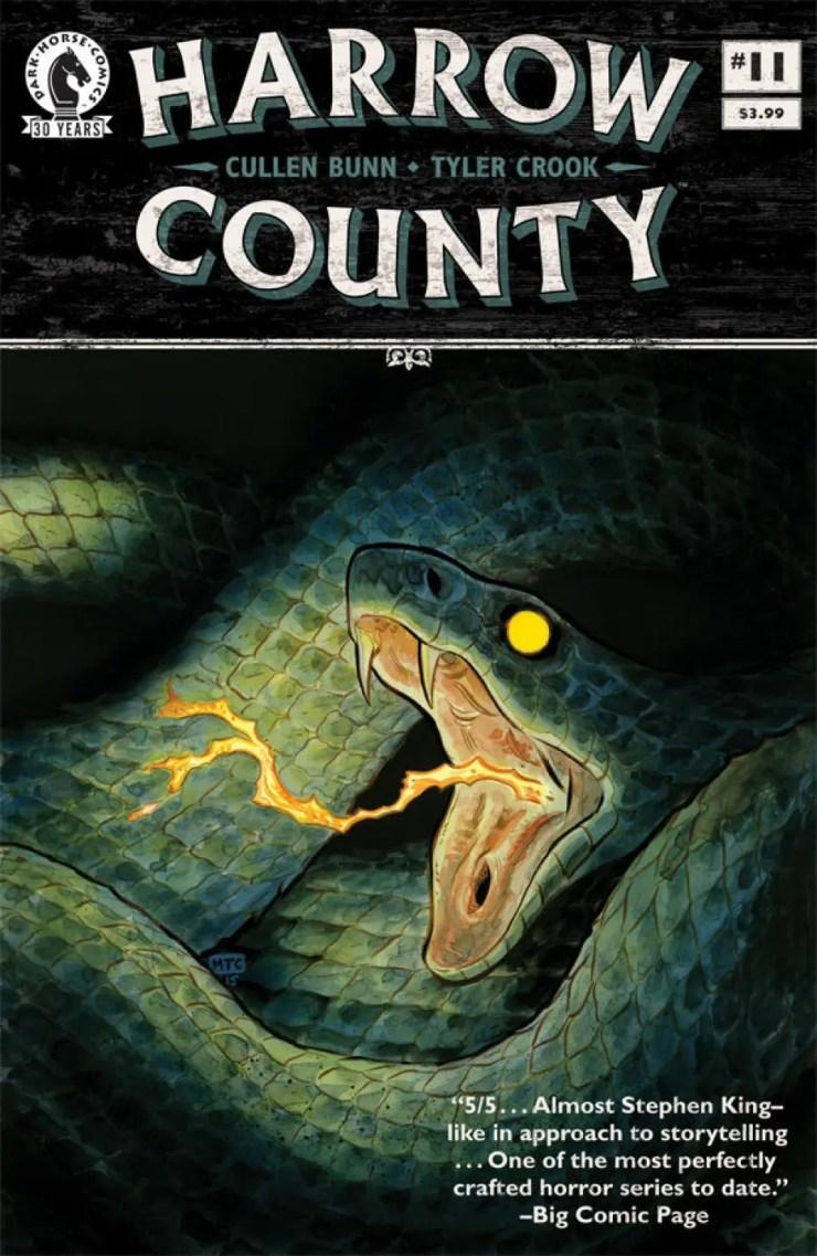 harrow-county-11-cover