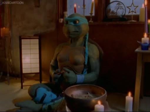 ninja-turtles-the-next-mutation-venus-de-milo