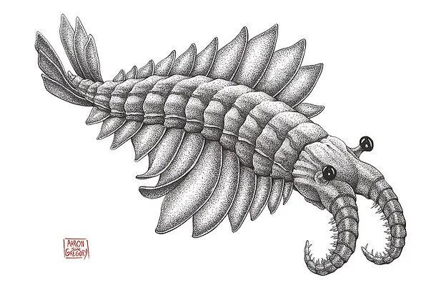 Serendipitous WonderCon Find: 'Cotton Crustacean' Paleobiology Shirts