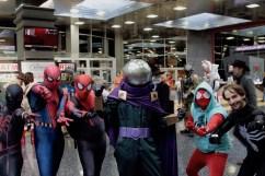 More Spider-mania!