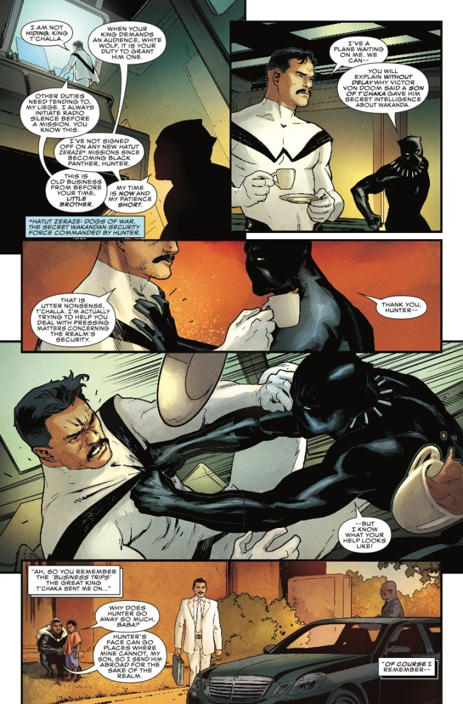 Rise of the Black Panther #5 Review
