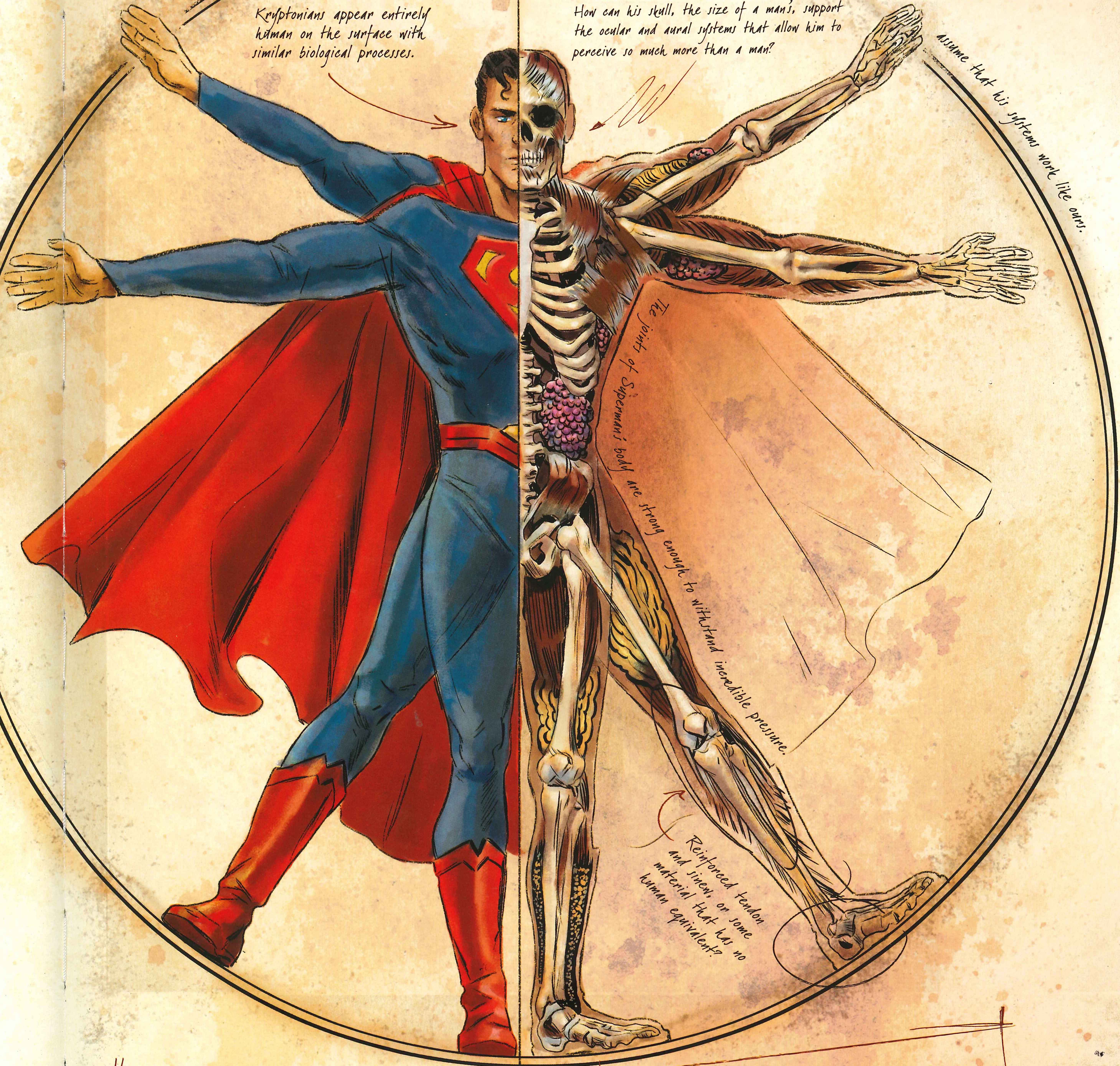 'DC Comics: Anatomy of a Metahuman' review -- Gorgeous, but incomplete