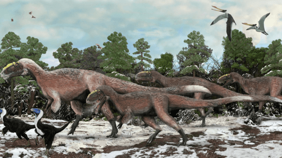 AIPT Science presents:  The coolest paleontology discoveries of the decade