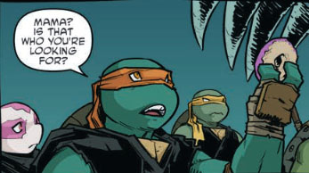 Teenage Mutant Ninja Turtles #114