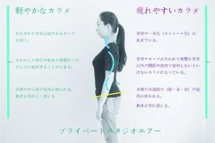 背骨のカーブが大切な理由