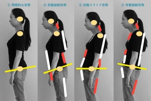 姿勢タイプ画像2