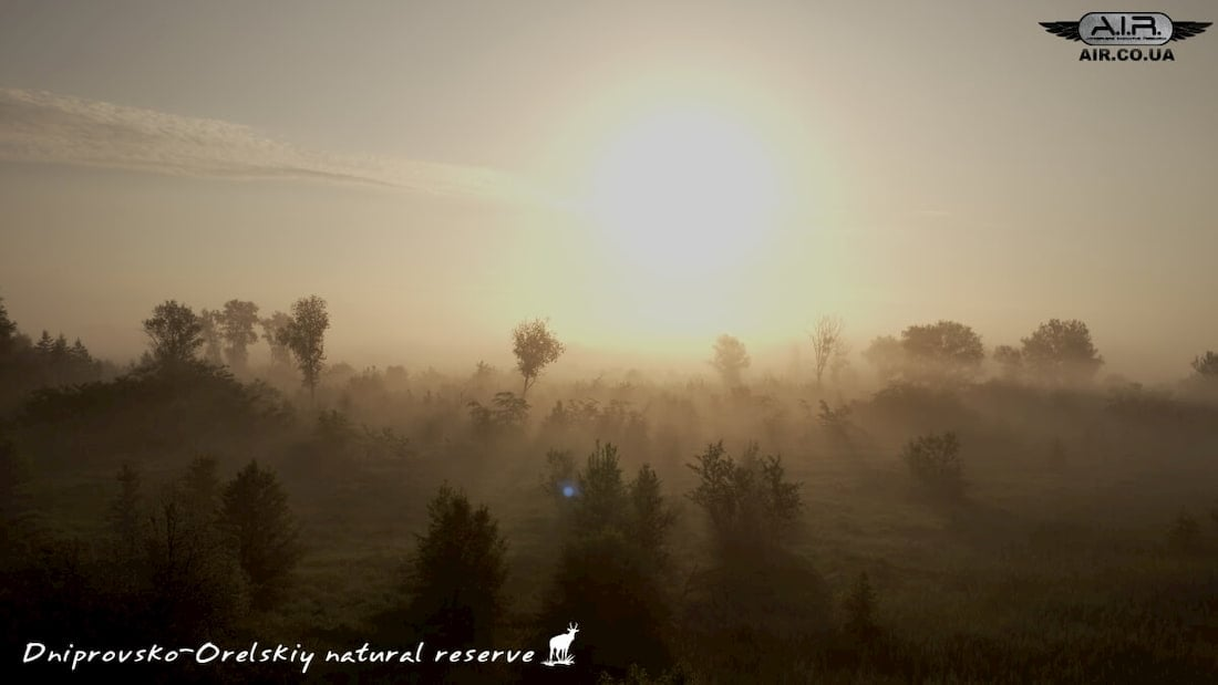 Rays are coming through the fog, photo shot with quadcopter Inspire 1 Pro
