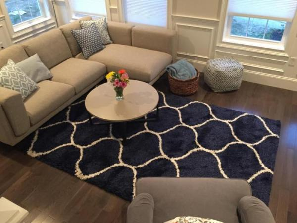 [Review] Safavieh Hudson Shag Collection Rug