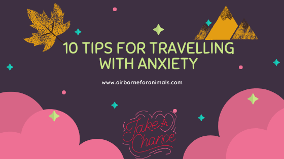 10 Tips for Travelling with Anxiety via @airborneforanimals
