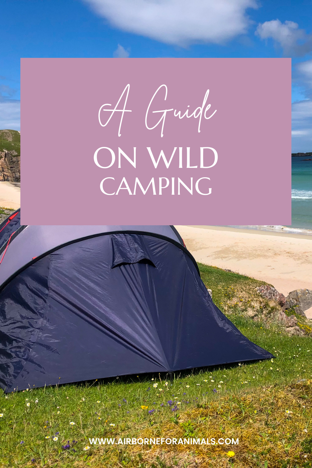 A guide on wild camping! Wild camping is something everyone should try at least once so find out what you need to know here. #wildcamping #campingguide #guideonwildcamping via @airborneforanimals
