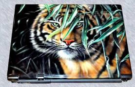 airbrush-on-laptop-82