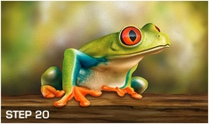 harder-steenbeck-frog-wildlife-stencils-with-step-by-step-instructions-9